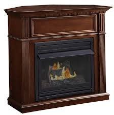 Vent Free Propane Fireplaces by Vent Free Propane Fireplace Insert Home Design Ideas