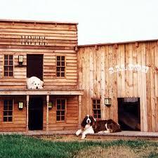 cool dog houses 16 fun functional doghouses sunset magazine wild west dog