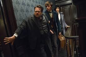 movie review fantastic beasts and where to find them the