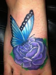 collection of 25 butterfly on blue on front