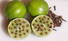 natural mosquito repellents get rid of mosquitos with natural repellents 2tinmoi home decor