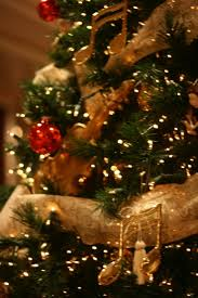 Christmas Tree Cataract Surgery by 20 Best Traditions Images On Pinterest Country Day