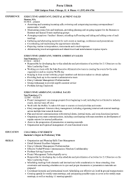 resume sles for executive assistant jobs sales executive assistant resume sles velvet jobs