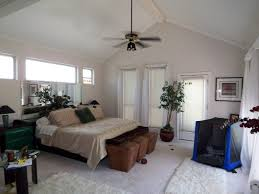 uncategorized best houseplants bamboo plants make your bedroom