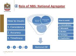 national bureau of statistics national bureau os statistics for national statistical sys