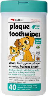 petkin fresh mint dog u0026 cat plaque tooth wipes 40 count chewy com