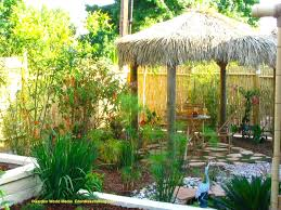 Tropical Backyard Designs Small Backyard Landscaping Ideas Without Grass The Garden