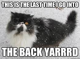Grumpy Cat Snow Meme - grumpy pirate snow cat memes quickmeme
