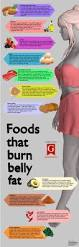 103 best fat burning foods images on pinterest health fat