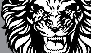 roaring face of lion tattoo design in 2017 real photo pictures