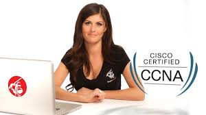 Sample Resume For Ccna Certified by Sample Resume Of Ccna Certified Tercentenary Essays