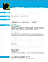 sle designer resume template interior design resume template word brokeasshome designer