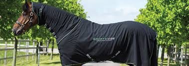 sportz vibe massage blanket for horses and dogs that contains
