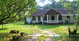 should i buy an old house buying an old house what to know before buying an old house ace