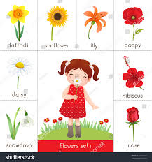 illustration printable flashcard flowers little stock vector