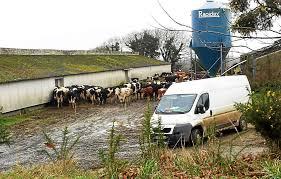 le télégramme quimper chambre d agriculture nous pouvons le télégramme actualité a la une commana un élevage qui inquiète