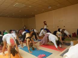 imagenes estudios yoga curso de yoga para principiantes en espacio para el yoga sevilla