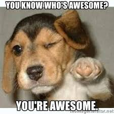 You Are Awesome Meme - you know who s awesome you re awesome fist bump puppy meme