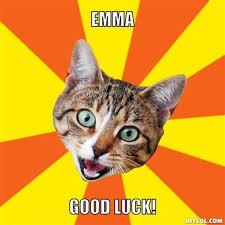 Good Luck Cat Meme - good luck cat meme info