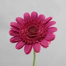 Artificial Sunflowers Category Artificial Sunflowers Gerbera U0026 Daisy Flowers