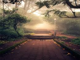 beautiful beautiful beautiful beautiful landscape photography