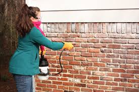 Painting Exterior Brick Wall - how to remove paint from exterior brick bower power