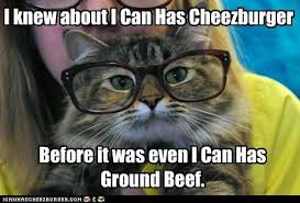 Hipster Cat Meme - i can has cheezburger hipster cat funny internet cats cat
