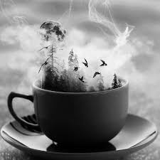 storm in a teacup 8tracks radio storm in a tea cup 7 songs free and music playlist