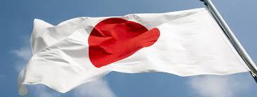 Japan Flag Image Japan Flag Burning Yakuza And Hidden Hands The Full Story Behind