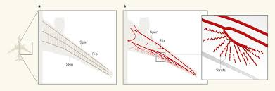 comparison between a conventional aircraft wing design and a