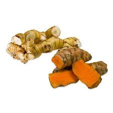 galangal cuisine fresh turmeric fresh galangal sler marx foods