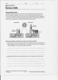 Food Chains Worksheet Ms Friedman U0027s Foundations In Science Photosynthesis Worksheet