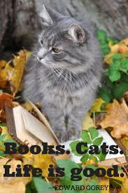 767 best cats and books magazines images on pinterest books