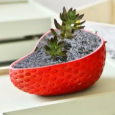 Cactus Planters by Popular Strawberry Pots Planters Buy Cheap Strawberry Pots