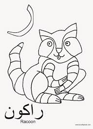 arabic alphabet coloring pages ra is for racoon a crafty arab