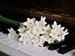 reasons to hire professional piano movers in nj nj piano mover