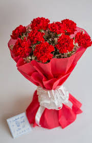Red Carnations Pink Carnations Grand Dilee Online Flowers