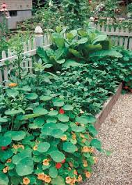 formality and surprise in a garden design vegetable gardener