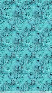 Teal Roses Teal Iphone Wallpaper Wallpapersafari
