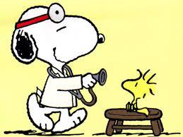 143 best snoopy images on pinterest peanuts snoopy peanuts