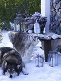 winter fur and stone home for the holidays pinterest winter