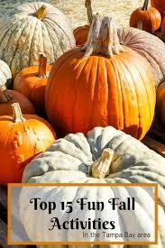 spirit halloween tampa top 15 fun fall activities in the tampa bay area
