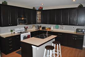 Pictures Of Kitchens With Black Cabinets Furniture Cozy Dark Pergo Flooring With Dark Kraftmaid Kitchen