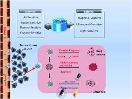 multifunctional mesoporous silica nanocarriers for stimuli