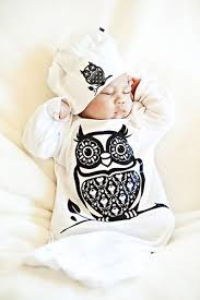 owl themed baby items best 25 owl baby stuff ideas on owl themed nursery