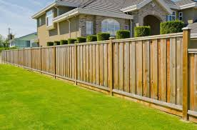 manificent decoration privacy fence ideas pleasing 27 great