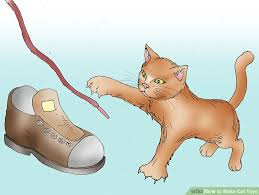 8 ways to make cat toys wikihow