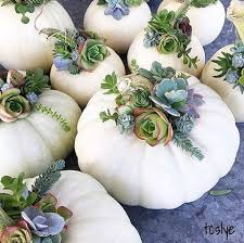 white pumpkins 9 ways to decorate with white pumpkins boho chic cafe
