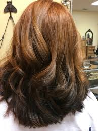 Balayage For Light Brown Hair Zooey Deschanel Natural Hair Color In 2016 Amazing Photo