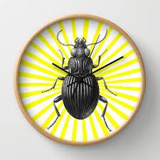 insecte cuisine horloge horloge murale kitsch original deco originale deco